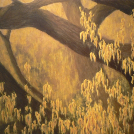 afternoon oak // 2009 // oil on canvas // 48 x 36""