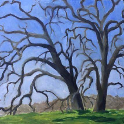 sister trees, putah creek; oil on canvas, 2017