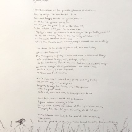 """""""Just Lying on the Grass at Blackwater"""" by Mary Oliver 