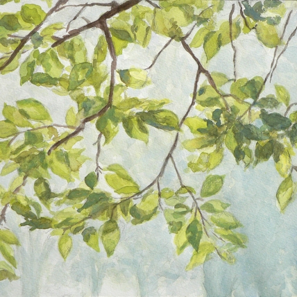 "overhanging branches, 2012; watercolor on paper; 11 1/2"" x 8 1/2"""