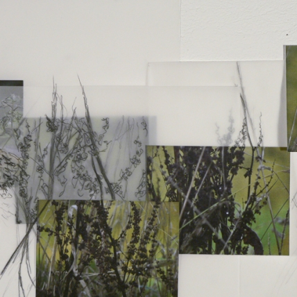 collage of place (detail) || 2009 || digital photographs and graphite on vellum