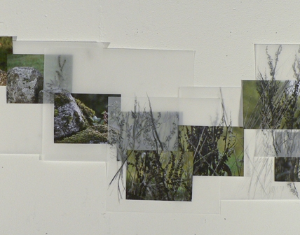 collage of place || 2009 || digital photographs and graphite on vellum